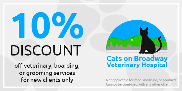 new client coupons cats on broadway veterinary hospital. Black Bedroom Furniture Sets. Home Design Ideas